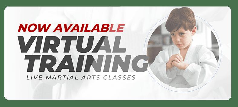 VIRTUALPOPUPSPARK.1.1, Medford Martial Arts and Fitness in Medford, NJ